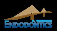 St. Petersburg Endodontics